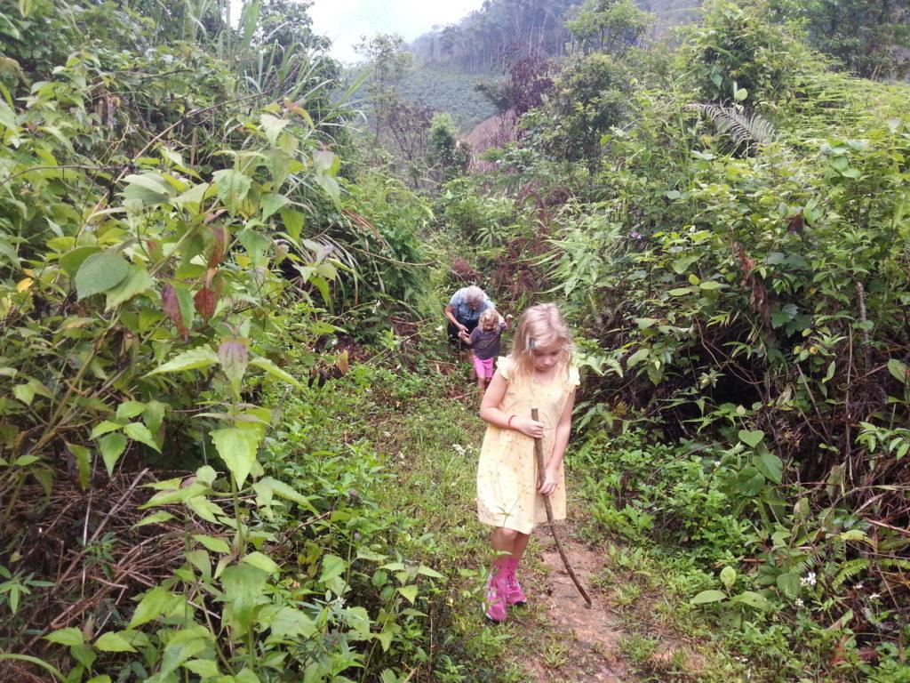 Ho Chi Minh Trails